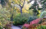 Γερμανία: Εδώ θα βρείτε και... τροπικούς κήπους!