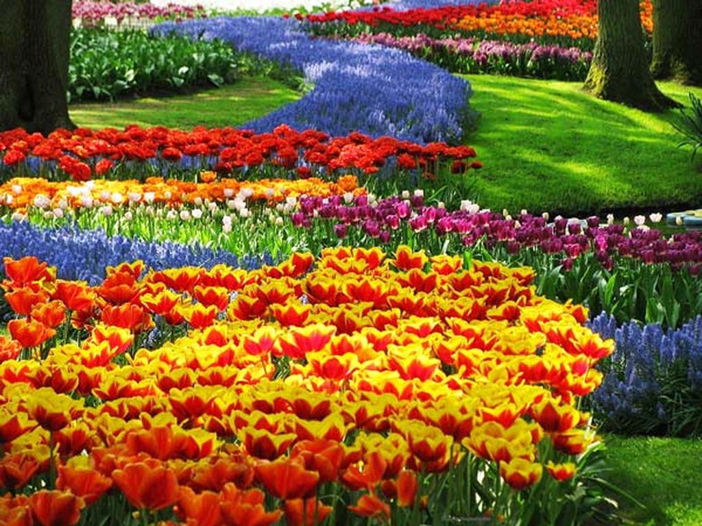 Γερμανία: Οι πιο παράξενες παραδόσεις για την 1η Μαΐου
