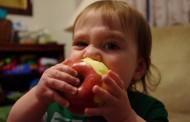 Ποια ώρα της ημέρας απαγορεύεται να φάμε φρούτα για να μην «αποθηκευτούν» ως λίπος