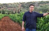 Savatiano, Roditis, Mandilaria: Warum sie diese griechischen Weinsorten probieren sollten