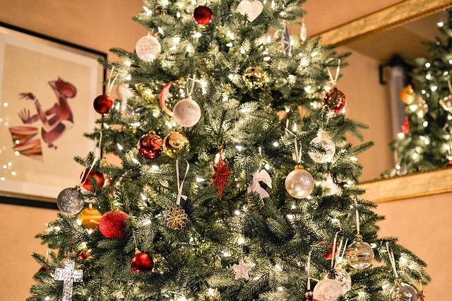 christmas-tree-1081981_640