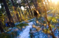 «Ήλιος με δόντια» το κυριότερο χαρακτηριστικό του καιρού στη Γερμανία για το Σάββατο, 21 Ιανουαρίου 2017