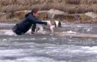 Έκανε βουτιά σε παγωμένη λίμνη ... για να σώσει τον σκύλο του! (Video)