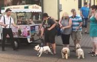 Γερμανία: Κι όμως, σε αυτή τη πόλη προσφέρεται παγωτό … για σκύλους!