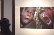 Διεθνής σάλος για την έκθεση φωτογραφίας που παρομοίασε τους Αφρικανούς με ζώα