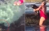 Βίντεο: Ατρόμητη γυναίκα πήρε... «αγκαλιά» καρχαρία για να τον σώσει