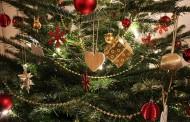 Σήμερα είναι στη Γερμανία η μέρα αγοράς του Χριστουγεννιάτικου Δέντρου; Δείτε τις τάσεις που επικρατούν
