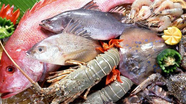 Οι ονομασίες των ψαριών στα Γερμανικά