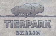 Βερολίνο: Ελεύθερος χρόνος με τα παιδιά σας στην πόλη - Τι μπορείτε να κάνετε