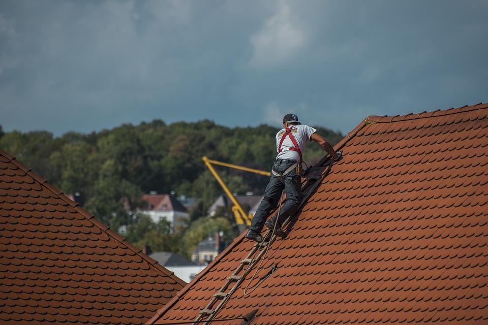 Κολωνία: Τεχνίτης στέγης μύρισε μεγάλη φυτεία Κάνναβης σε βιομηχανική περιοχή