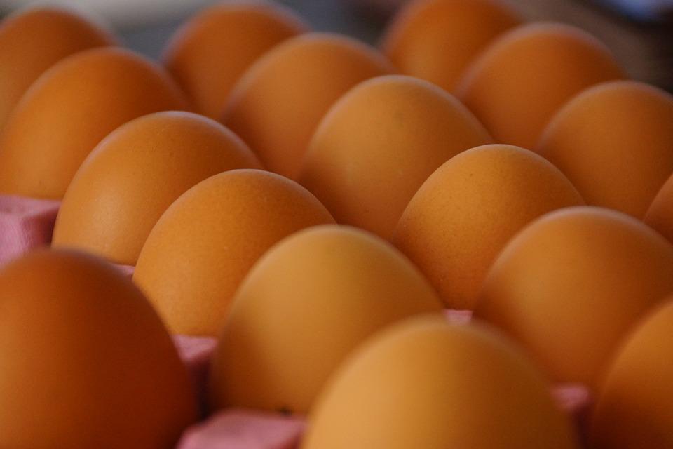 Γερμανία: Νέο σκάνδαλο με μολυσμένα αυγά - Εντοπίστηκε και αποσύρθηκε παρτίδα 73.000 αυγών