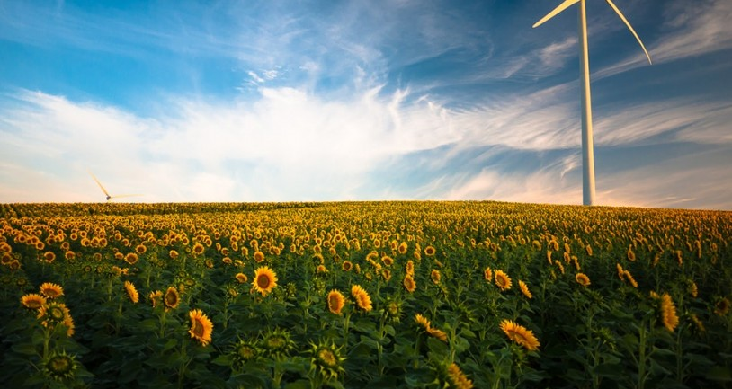 Γερμανία: Πρωτοπόροι στην προστασία του περιβάλλοντος