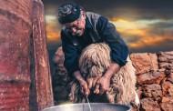 Γερμανία: Αδυναμία στα Κρητικά προϊόντα!