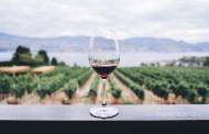 Γερμανία: Μάγεψαν τα Ελληνικά κρασιά στην Prowein 2019