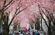 Γερμανία: 5 Events που δεν πρέπει να χάσεις τον Απρίλιο
