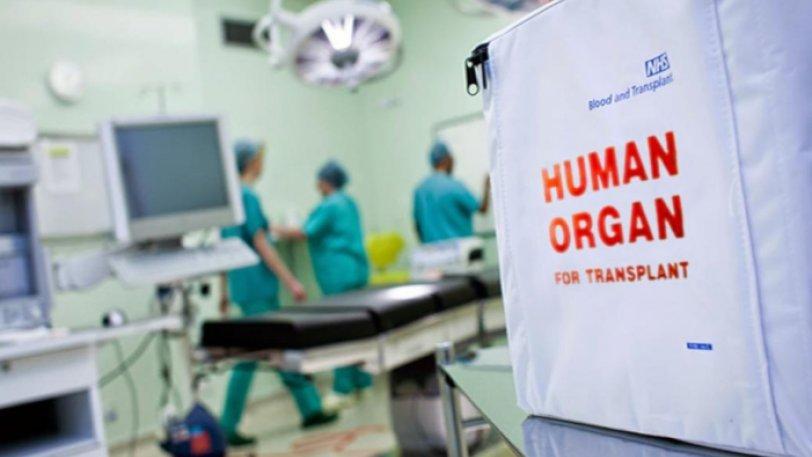 Δωρίζουν σε Ελλάδα και Γερμανία τα όργανα του άτυχου 13χρονου από την Πρέβεζα