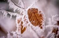Αισθητή πτώση της θερμοκρασίας στη Γερμανία την Τρίτη, 7 Φεβρουαρίου 2017