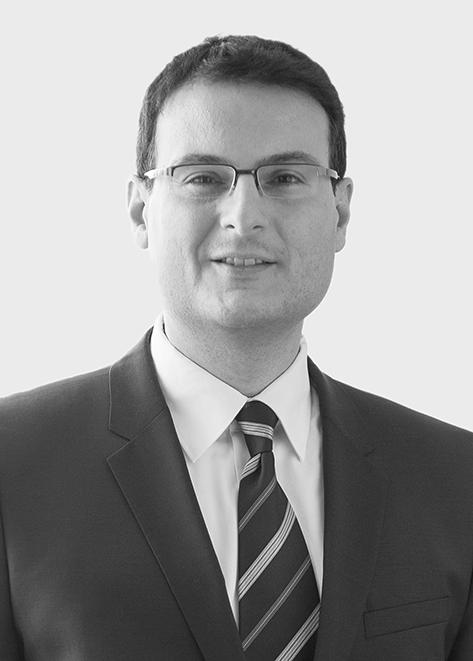 Στέφανος Καραγιαννίδης (Wirtschaftsprüfer)