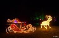 Χριστουγεννιάτικη Βόλτα στο Βοτανικό Κήπο του Βερολίνου