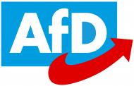 Γερμανία: Κατηγορούνται για δωροδοκία μέλη του AfD